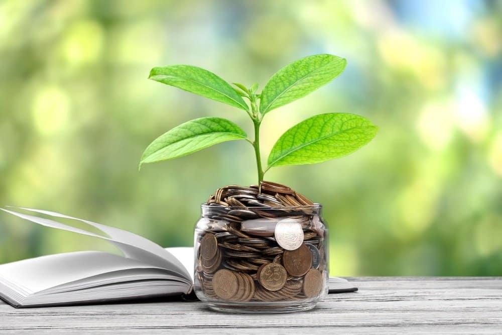 Investimento para iniciantes: confira dicas!